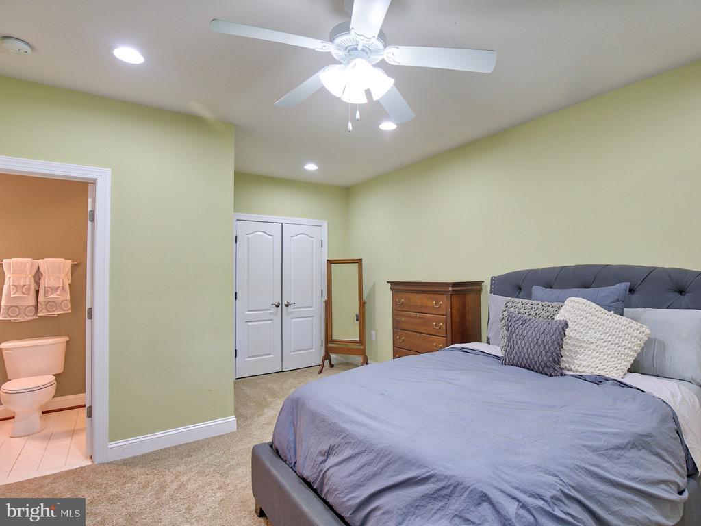 Lower Level Bedroom #5 - 23429 ROUNDUP PL, ALDIE