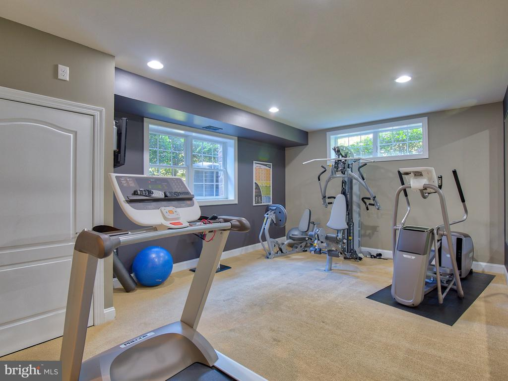 Full Gym or 6th Bedroom - 23429 ROUNDUP PL, ALDIE