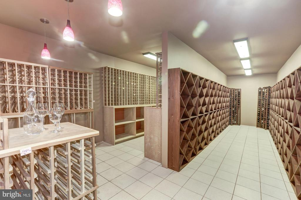 7,000 bottle custom wine cellar - 7115 WOLF DEN RD, FAIRFAX STATION