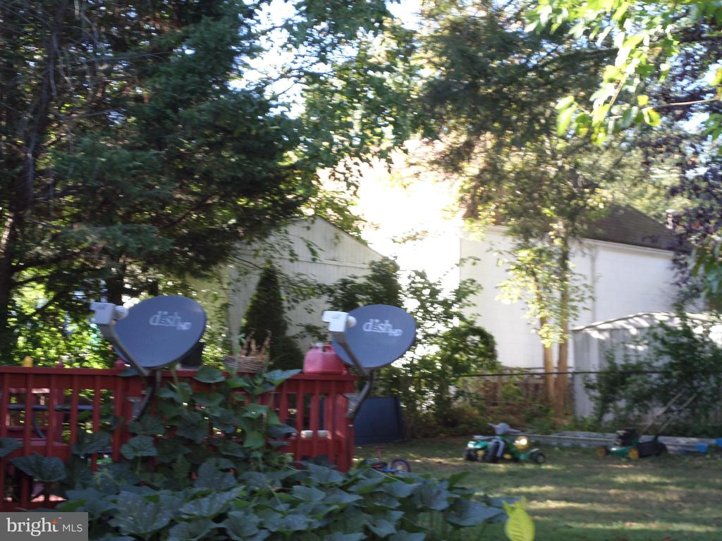 Peaceful rear yard - 1102 VEIRS MILL RD, ROCKVILLE
