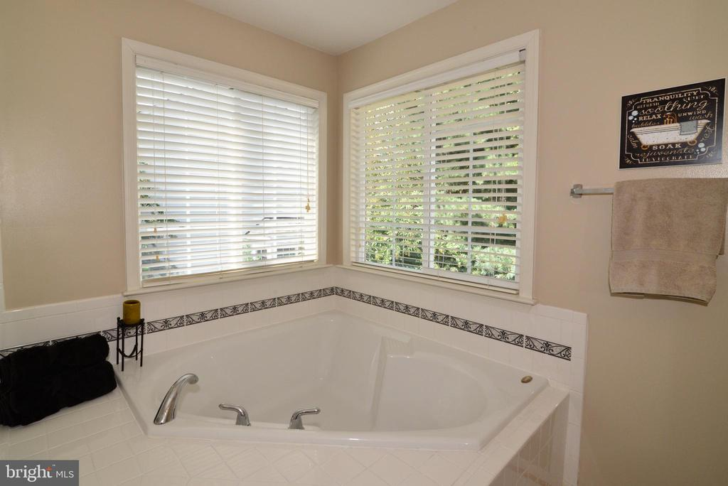 Soaking Tub - 245 E SKYLINE DR, PURCELLVILLE