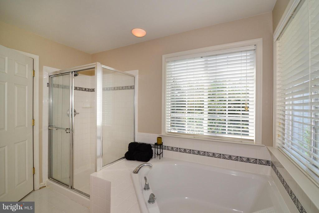 Master with Soaking Tub and Shower - 245 E SKYLINE DR, PURCELLVILLE