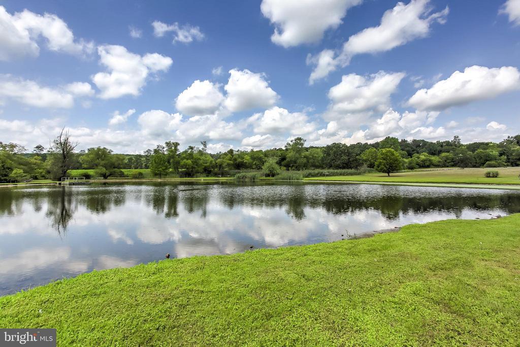 Pond - 15404 TANYARD RD, SPARKS GLENCOE