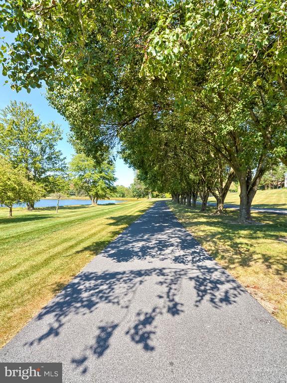 Driveway - 5223 FAIRGREENE WAY, IJAMSVILLE