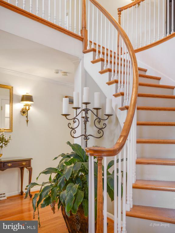 Elegant curved staircase - 5223 FAIRGREENE WAY, IJAMSVILLE