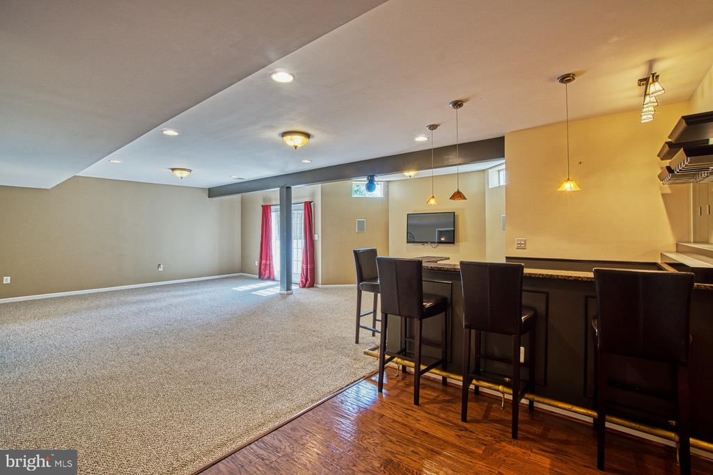 Extra Large Recreation Room - 42763 FOREST CREST CT, ASHBURN
