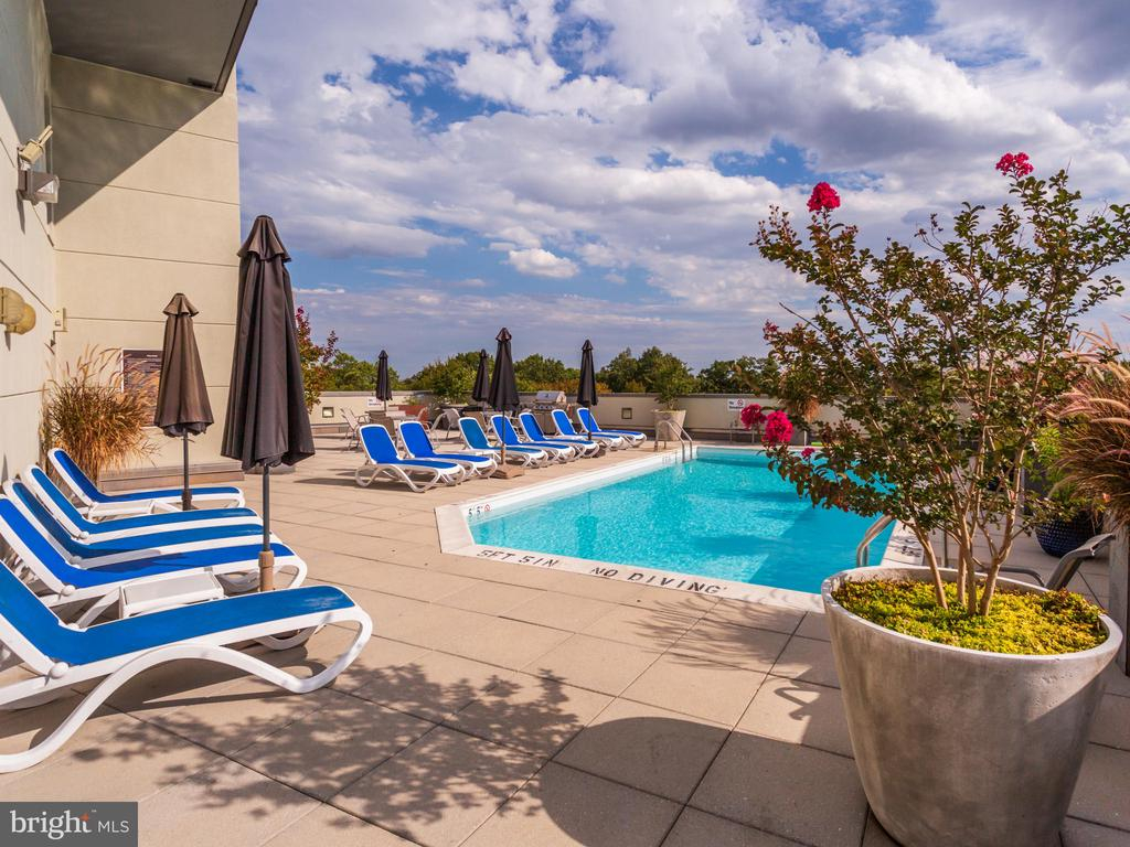 Pool stays open past Labor Day! - 3883 CONNECTICUT AVE NW #707, WASHINGTON