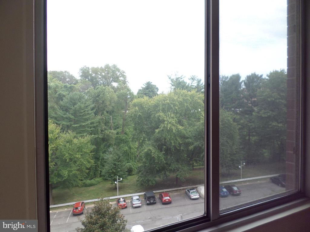 View of Rock Creek Park and deeded parking space - 2939 VAN NESS ST NW #726, WASHINGTON