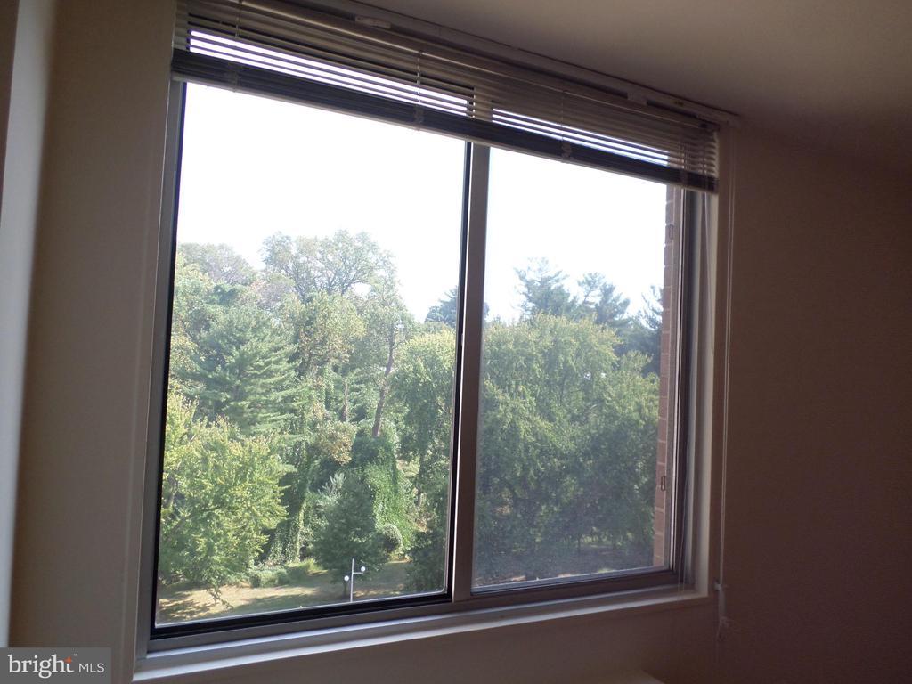 Views to Rock Creek Park - 2939 VAN NESS ST NW #726, WASHINGTON