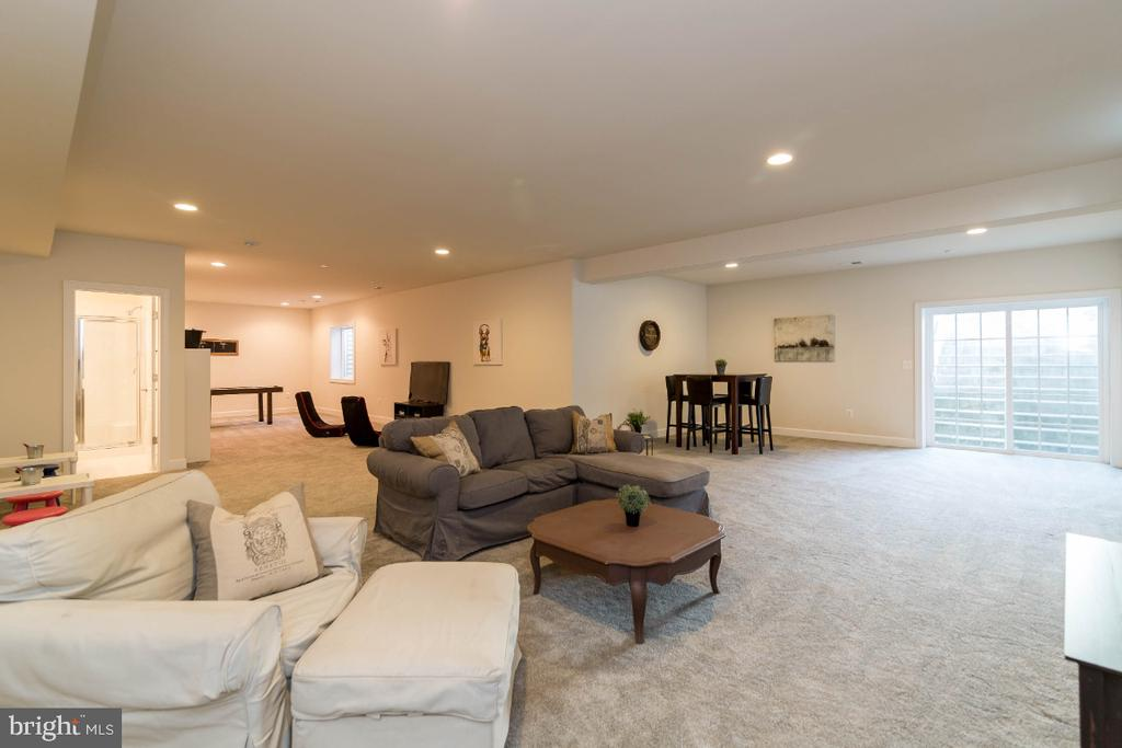 Lower Level Rec Room with Double Wide Exit - 15475 BERKHAMSTEAD PL, LEESBURG