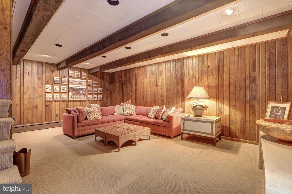 Recreational Room - 5903 CONNECTICUT AVE, CHEVY CHASE