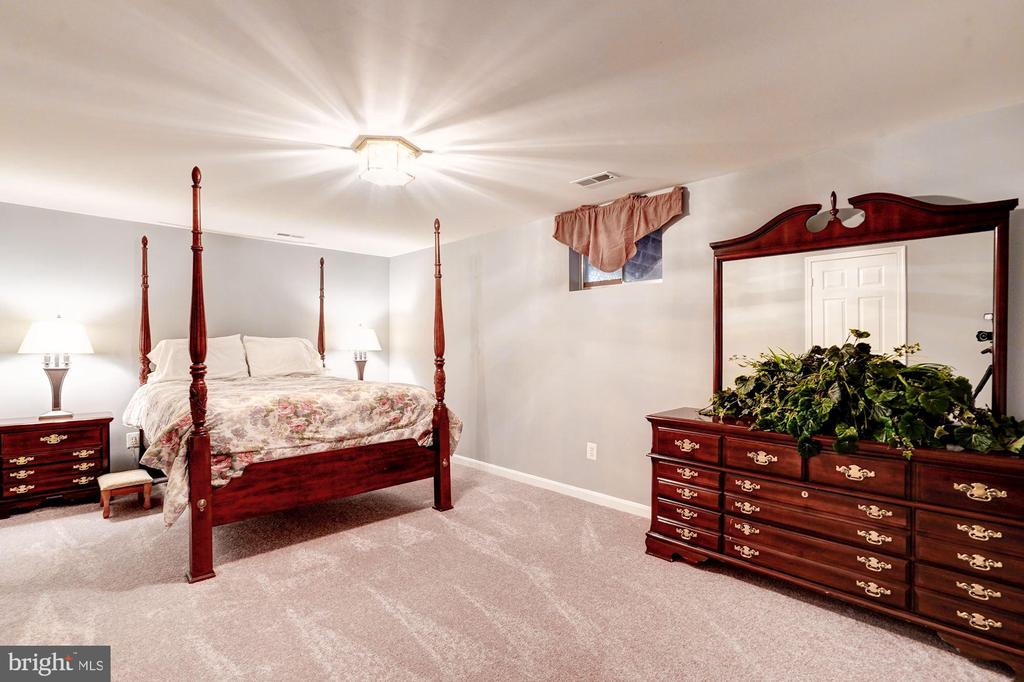 LL bedroom (not legal bedroom)/ great space - 25272 RIPLEYS FIELD DR, CHANTILLY