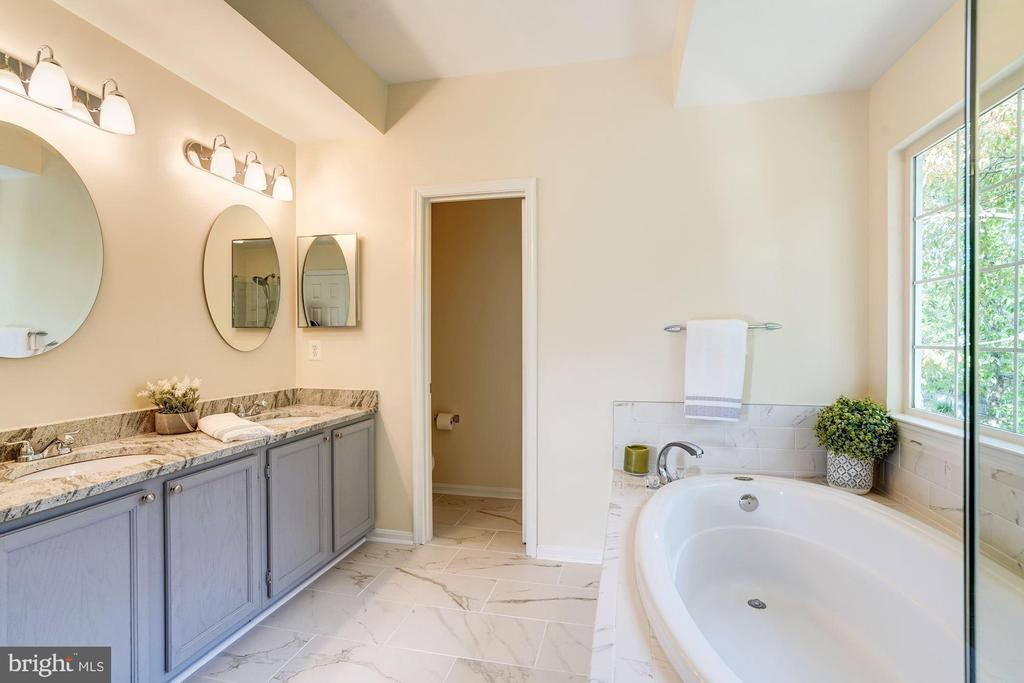 master bath-view - 25272 RIPLEYS FIELD DR, CHANTILLY
