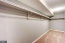 Huge seasonal storage closet in lower level - 25272 RIPLEYS FIELD DR, CHANTILLY