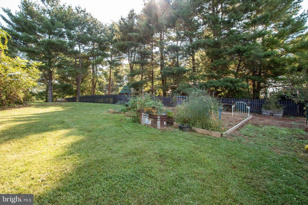Rear Garden - 37831 DEERBROOK LN, PURCELLVILLE