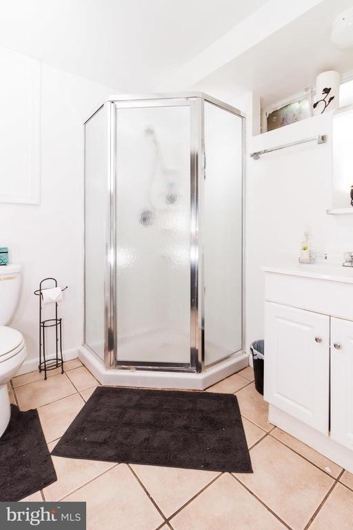 Basement Full Bathroom - 1113 SPOTSWOOD DR, SILVER SPRING
