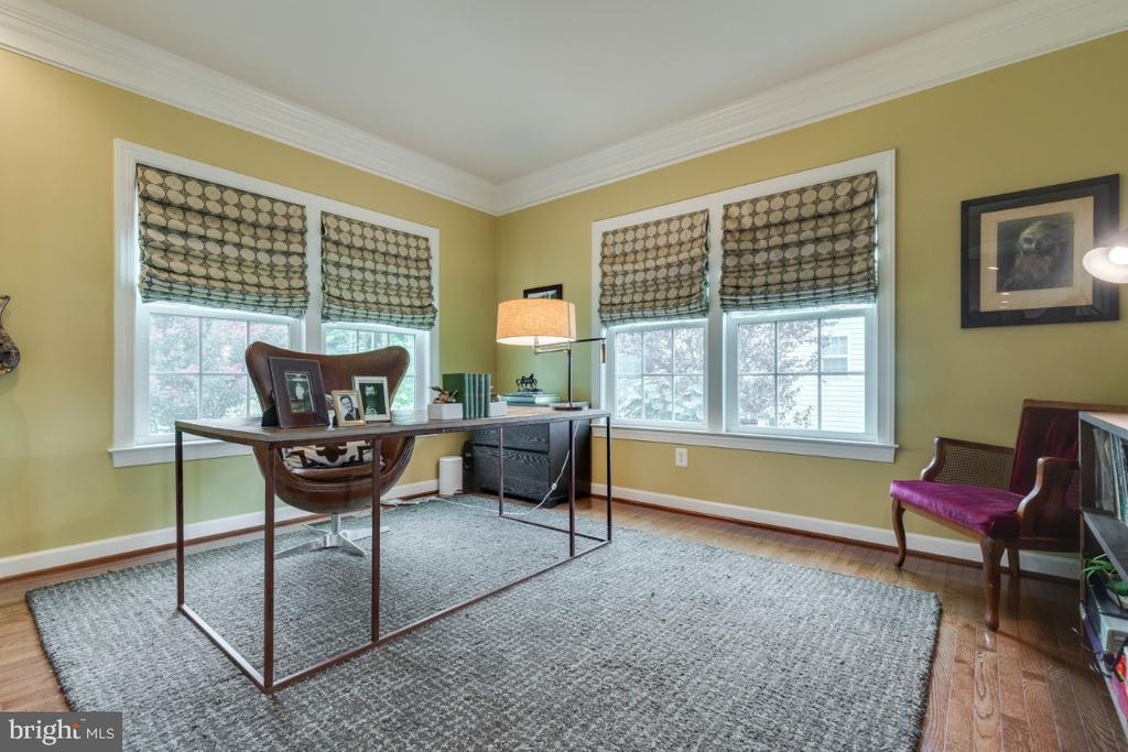 Stunning green space views from office - 25401 JUBILANT DR, ALDIE