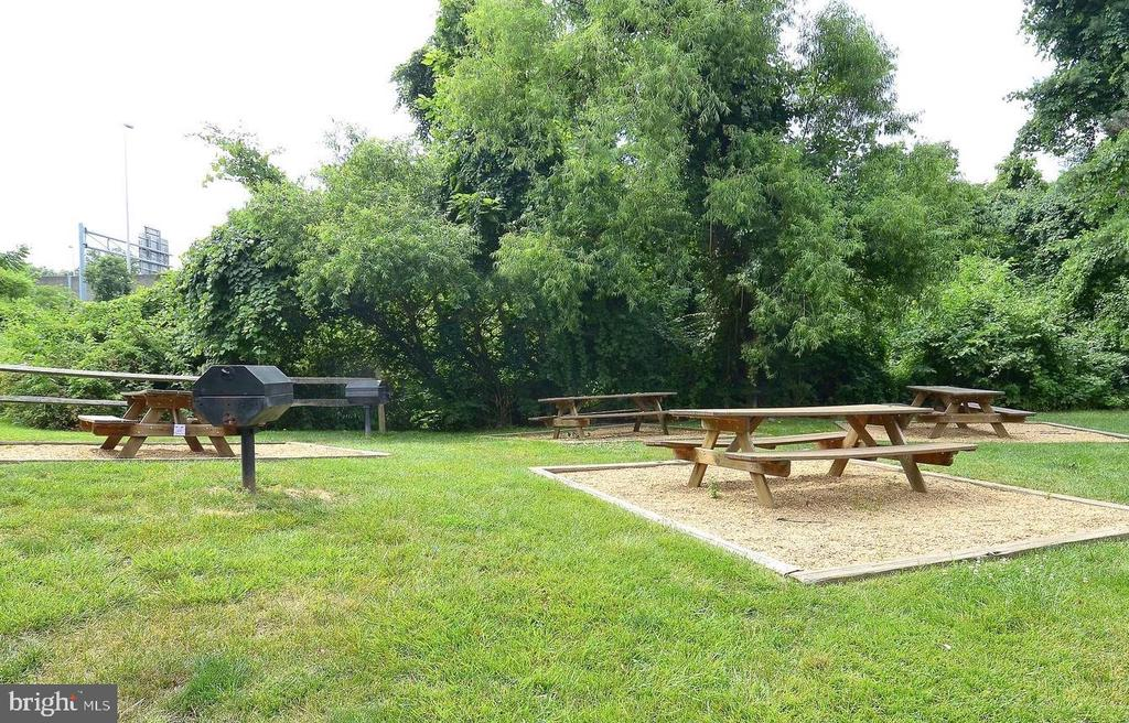 Enjoy the fun picnic and grill  area - 10248 APPALACHIAN CIR #1-A3, OAKTON