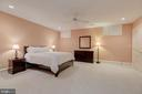 Lower Level Bedroom - 916 MACKALL AVE, MCLEAN