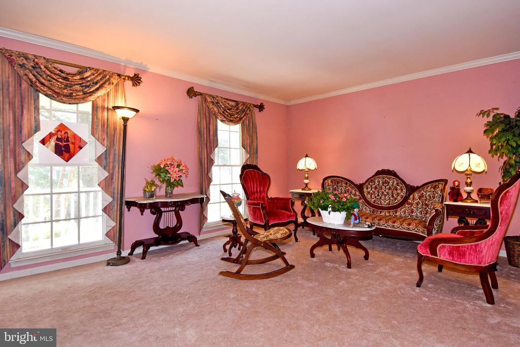 Bright and spacious living room - 13919 WHETSTONE MANOR CT, CLIFTON