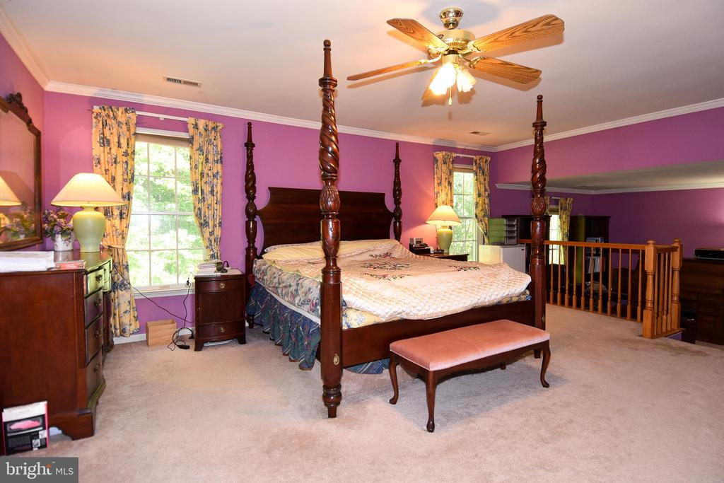 MBR w/ bright windows and ceiling fan - 13919 WHETSTONE MANOR CT, CLIFTON