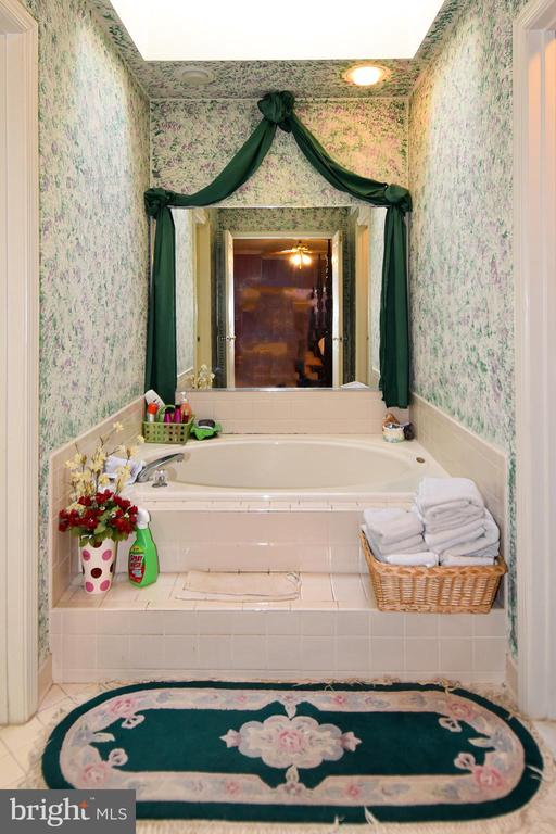 Luxurious, separate soaking tub in MBA - 13919 WHETSTONE MANOR CT, CLIFTON