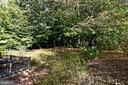Private, tree-lined lot - 13919 WHETSTONE MANOR CT, CLIFTON