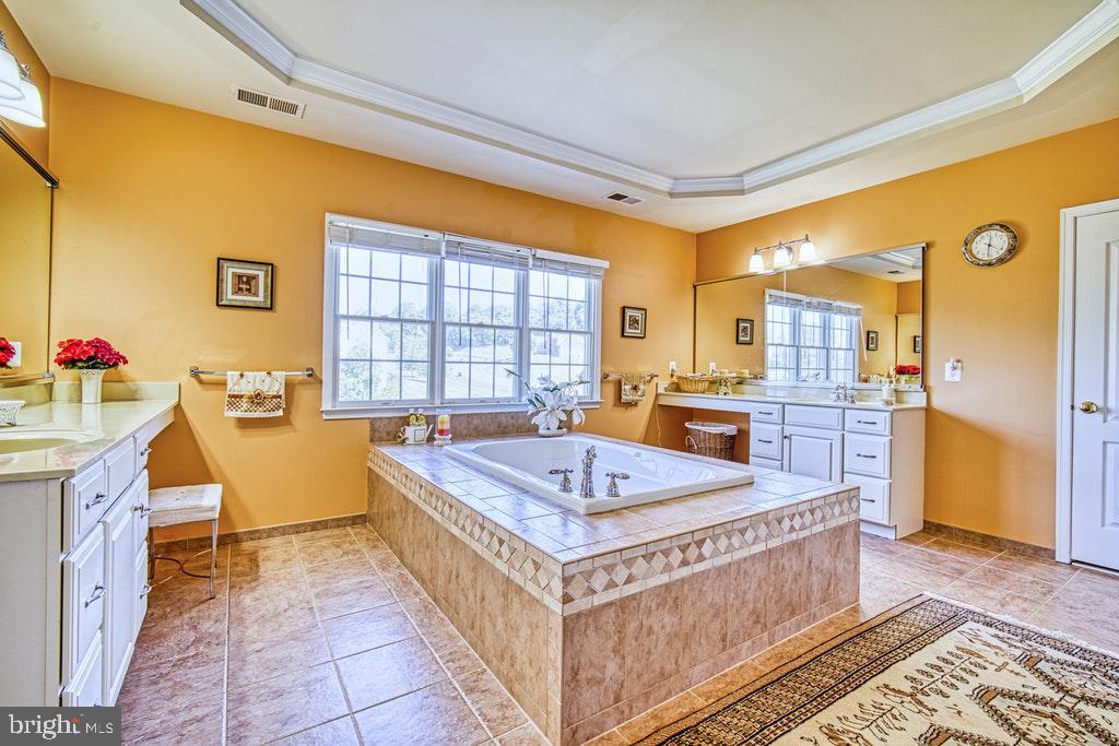 Bath  has tray ceiling & soaking tub - 15500 BANKFIELD DR, WATERFORD