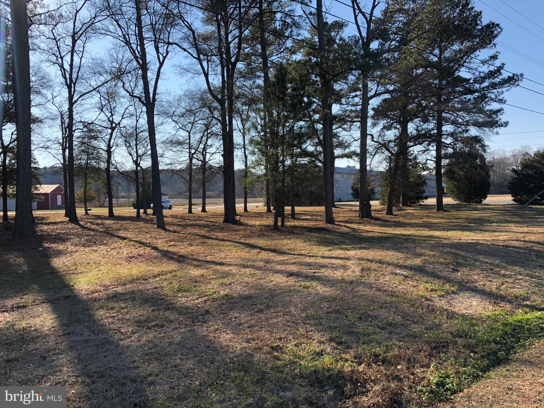 土地,用地 为 销售 在 Mardela Springs, 马里兰州 21837 美国