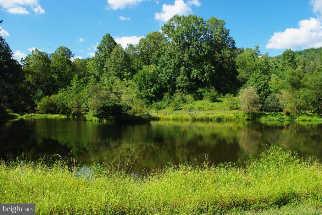 Large pond is well stocked and even has an island - 21 ANNIES LN, SPERRYVILLE