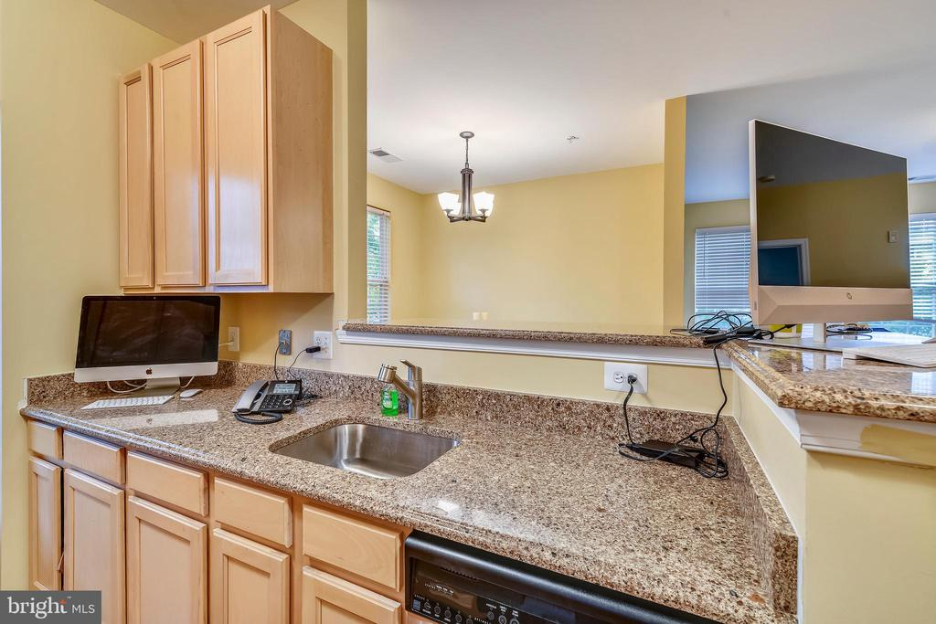 New granite counters and Stainless appliances! - 22641 BLUE ELDER #201, ASHBURN