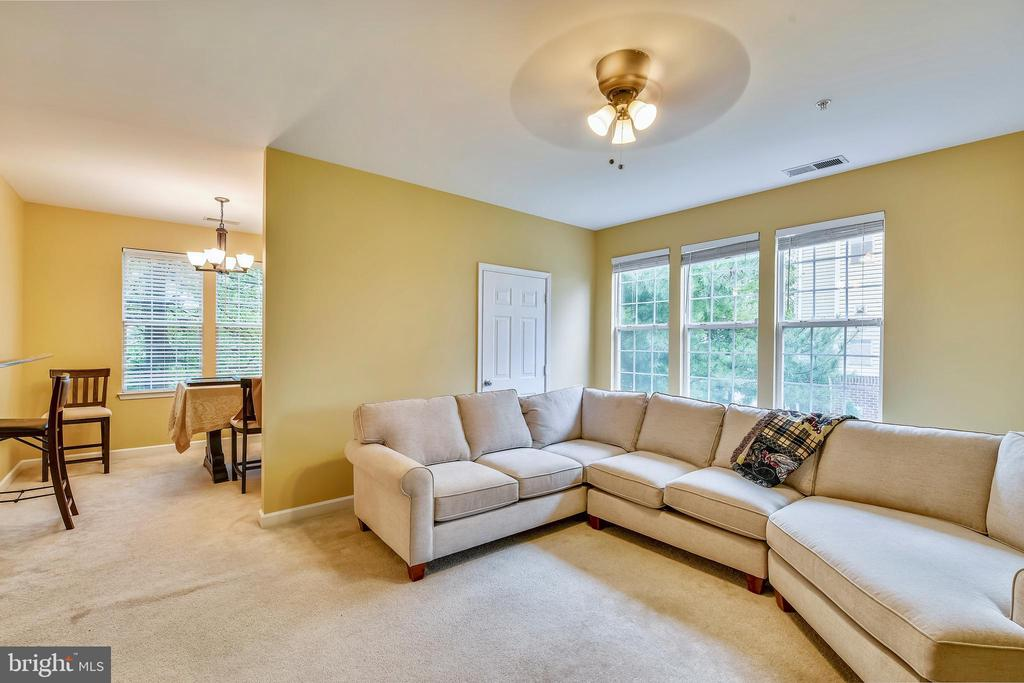 Spacious light-filled family room and dining area - 22641 BLUE ELDER #201, ASHBURN