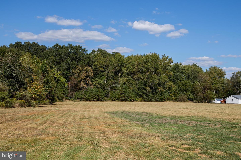 土地 為 出售 在 Vienna, 馬里蘭州 21869 美國