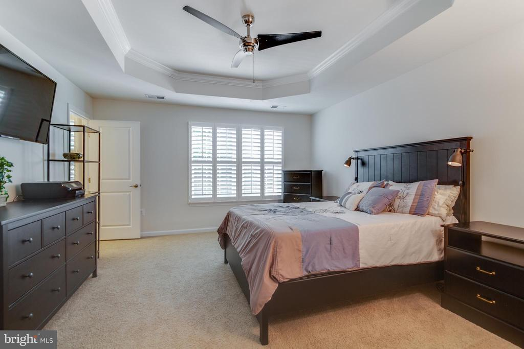 Master with modern ceiling fan - 4624 ALLIANCE WAY, FREDERICKSBURG