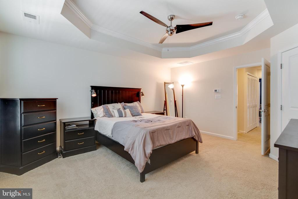 Master with Tray Ceilings - 4624 ALLIANCE WAY, FREDERICKSBURG