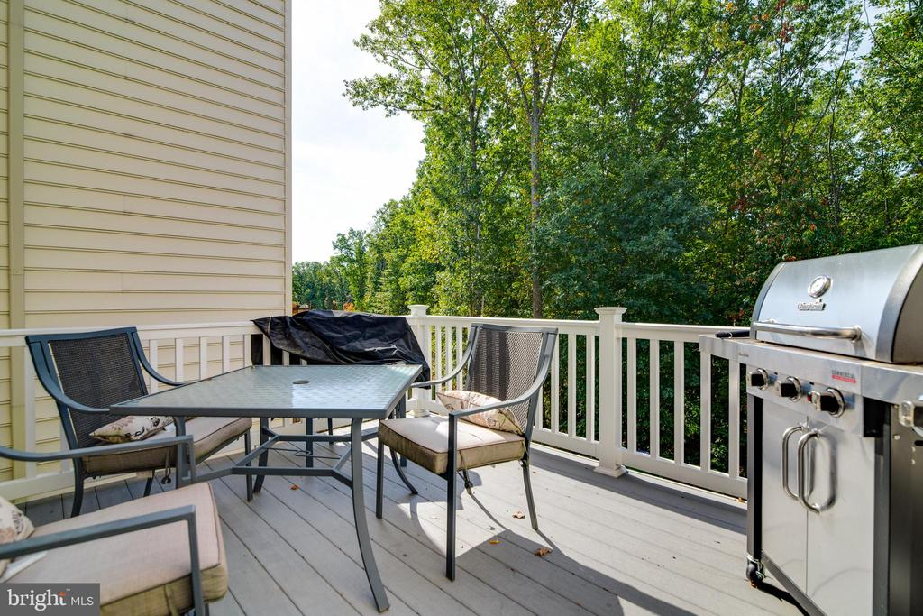 No maintenance upper deck for entertaining or R&R - 4624 ALLIANCE WAY, FREDERICKSBURG