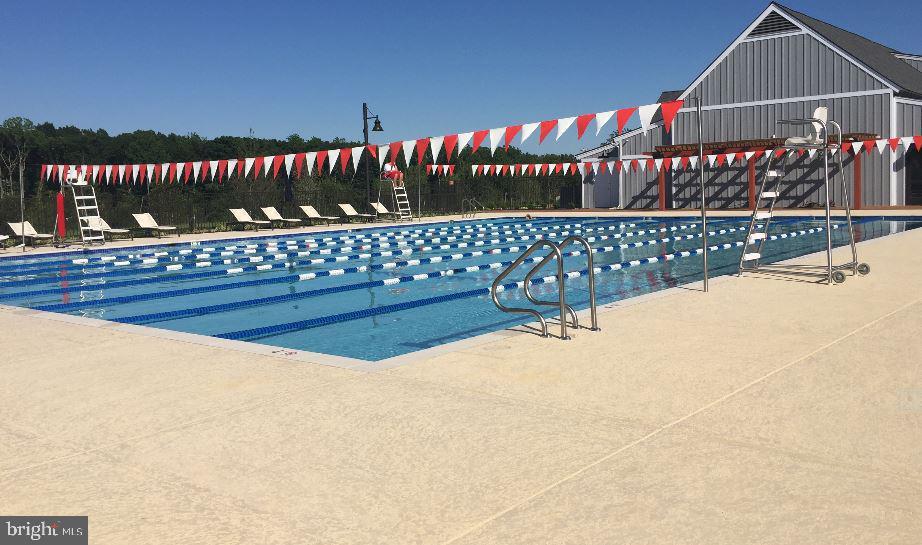 The lap pool - 2283 RIVER BIRCH RD, DUMFRIES
