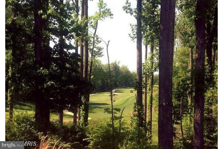 So much nature and trails and a gorgeous course - 2283 RIVER BIRCH RD, DUMFRIES