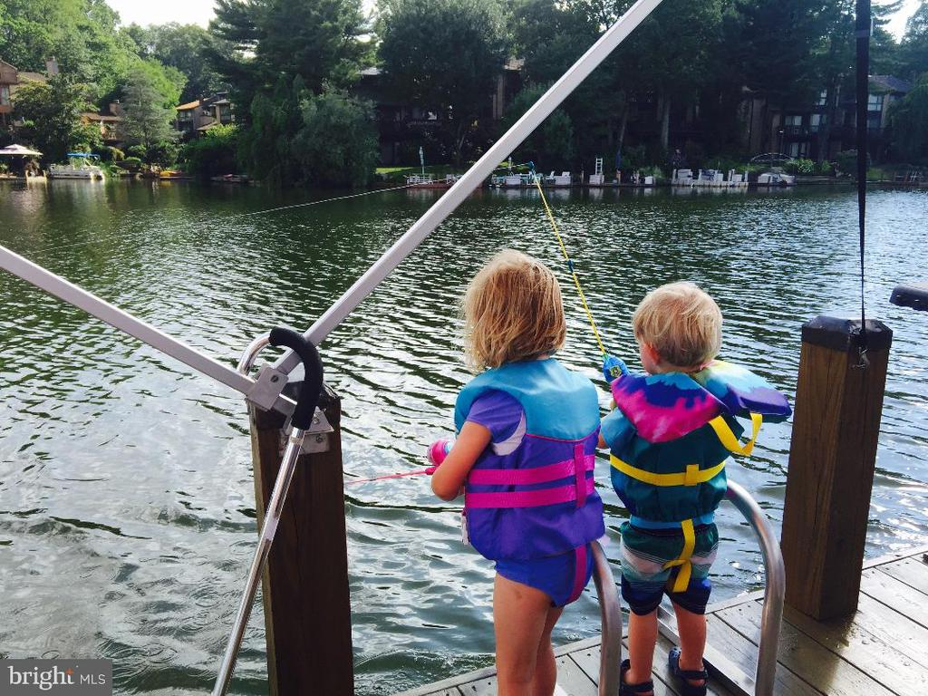 Let's Go Fishing - 2031 LAKEWINDS DR, RESTON