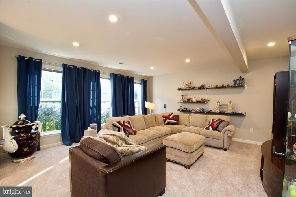 Large Lower level living room, Bright and light. - 5793 VALLEY VIEW DR, ALEXANDRIA