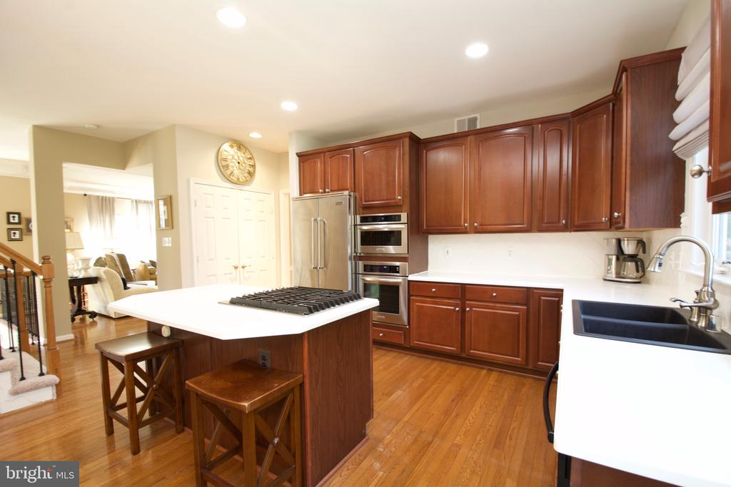 Double Oven, sink, corian counters & Viking Fridge - 5793 VALLEY VIEW DR, ALEXANDRIA