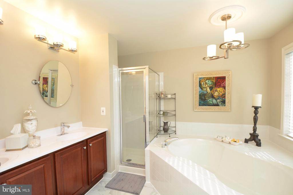 Double sink and soaker tub - 5793 VALLEY VIEW DR, ALEXANDRIA