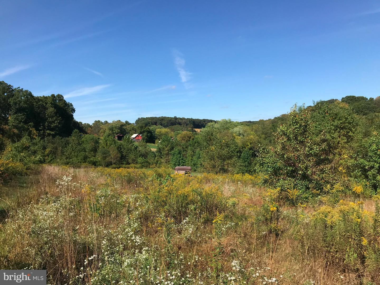 Single Family Homes per Vendita alle ore Freeland, Maryland 21053 Stati Uniti