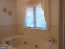 Relaxing in this tub while watching nature ! - 12219 CHAPEL RD, CLIFTON