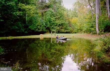 You can sail a canoe on your own private pond. - 12219 CHAPEL RD, CLIFTON