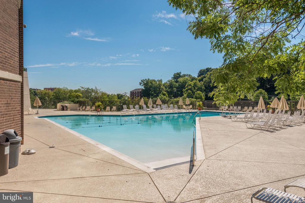 Gorgeous pool - 1600 N OAK ST #1116, ARLINGTON