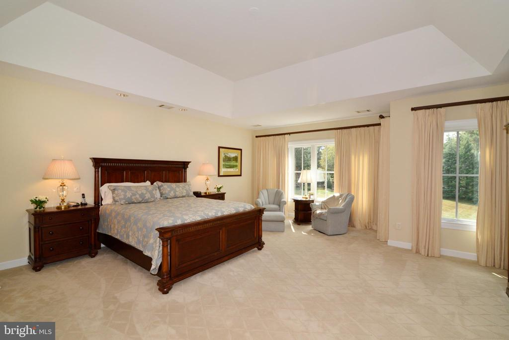 Master Bedroom w/ Windows Overlooking Private Yard - 10507 WICKENS RD, VIENNA