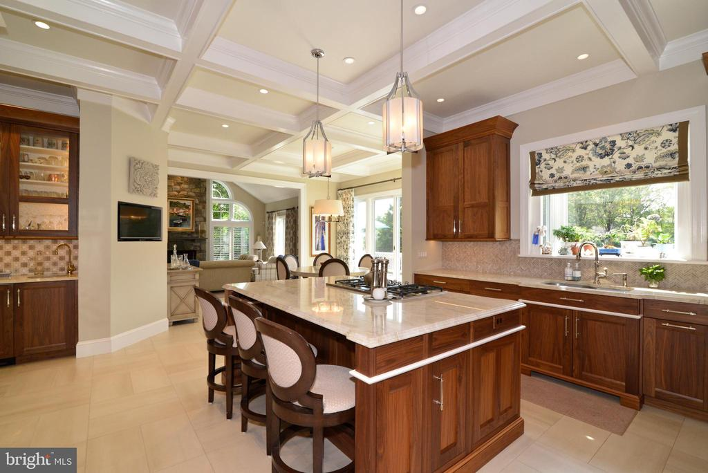 Stunning Kitchen with Dramatic Coffered Ceiling. - 10507 WICKENS RD, VIENNA