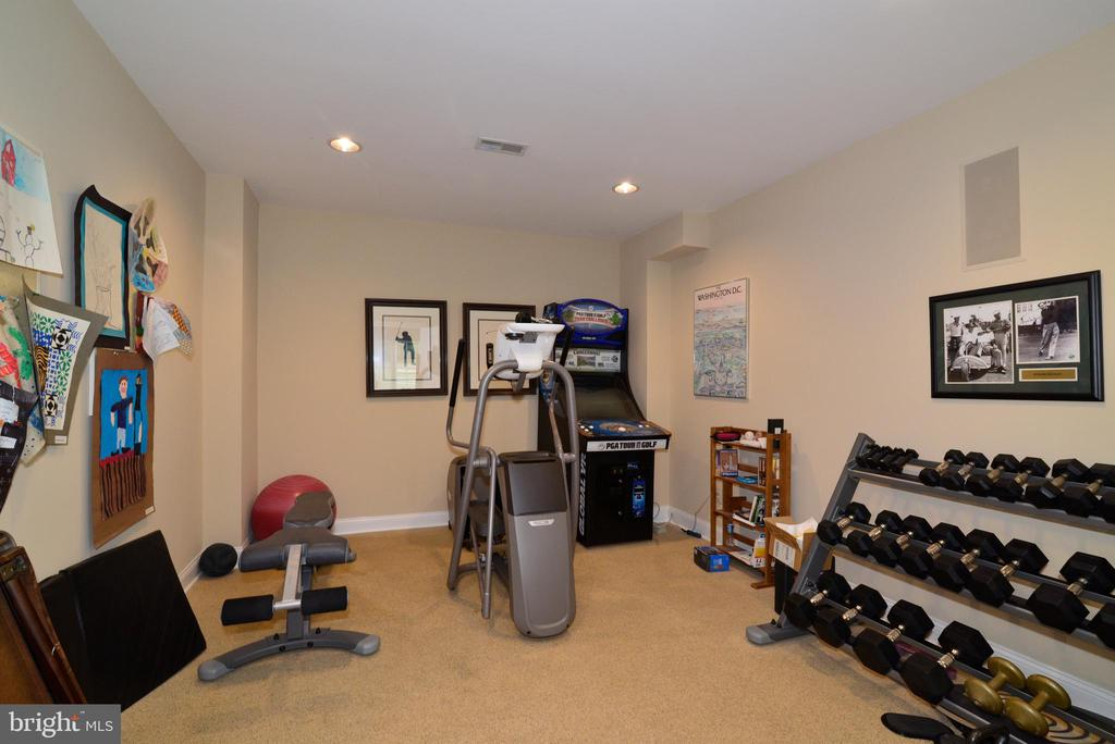 Lower Level Gym. - 10507 WICKENS RD, VIENNA