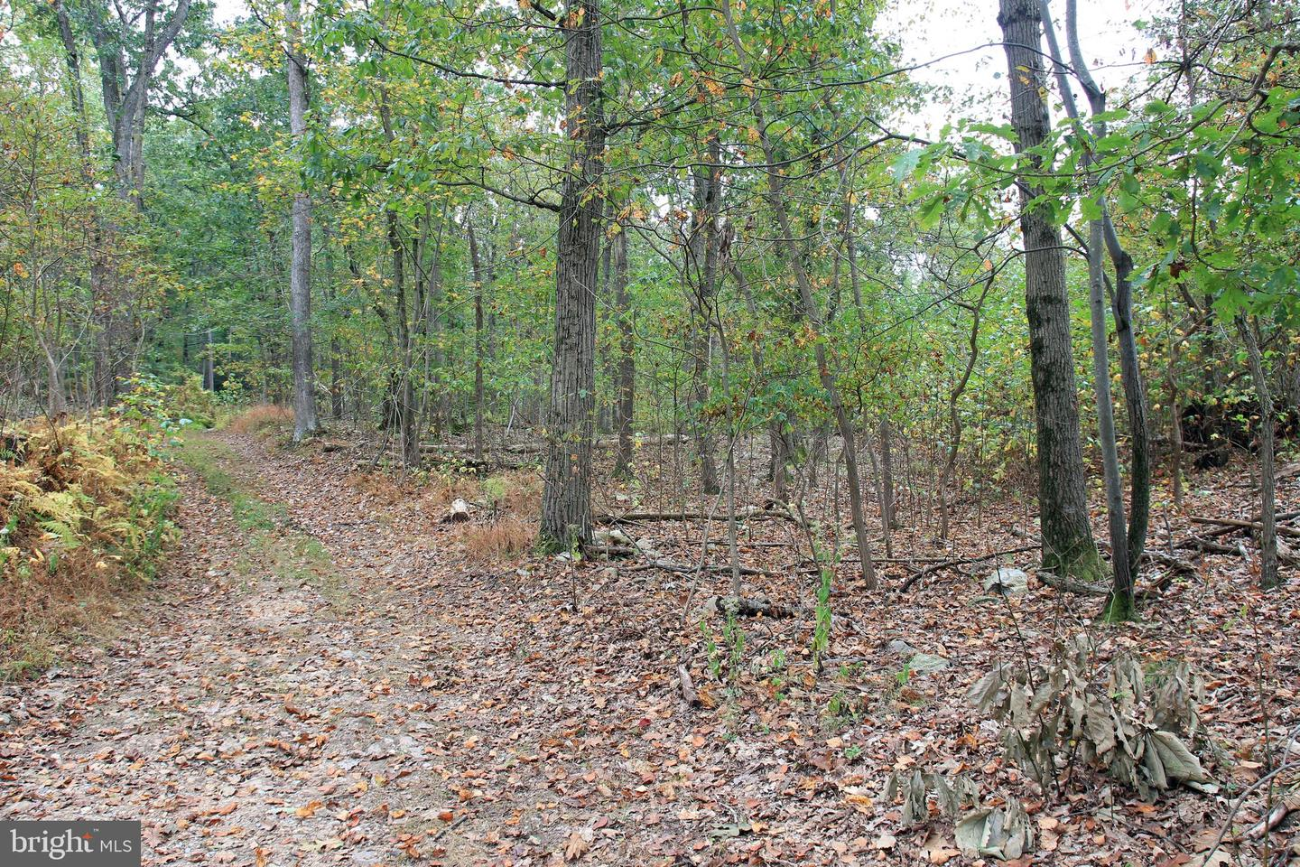 Land for Sale at Boiling Springs, Pennsylvania 17007 United States